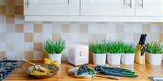 Tangent Spectrum W1 Google Cast Blanc